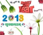 2013-New-Year1