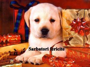 cadou_de_craciun