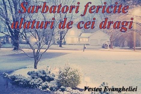 peisaje_iarna4