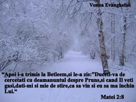 Poze super_ Imagini super tari_ Peisaje iarna super 28