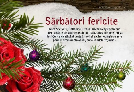 versete in imagini-felicitari crestine-iarna-sarbatori-brad-zapada