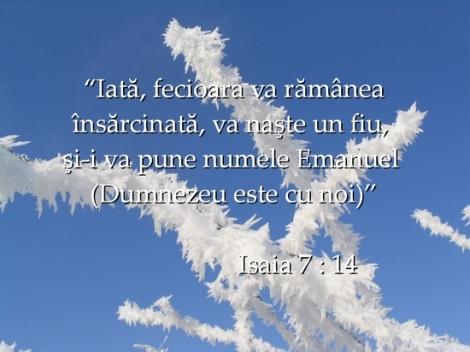 versete367