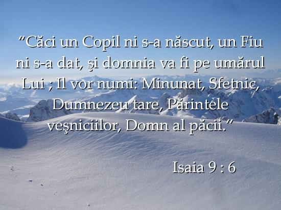 versete368