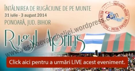 ra-ponoara-2013-live-660px